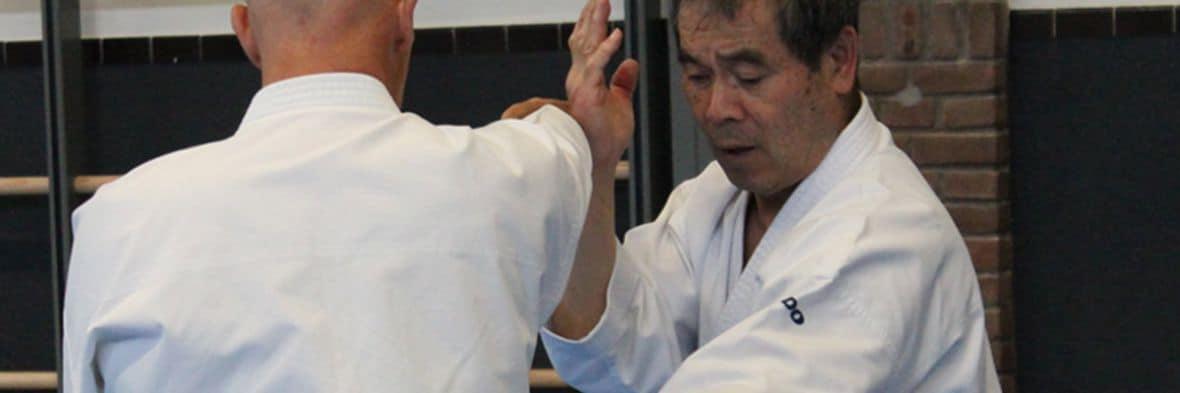 Sakagami - Peter May - Nagashi Uke