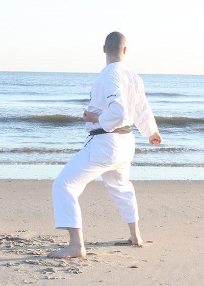 The Digi Dojo - Kata - Wadokai Niseishi - Gedan Barai