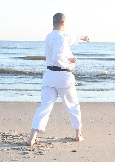 The Digi Dojo - Kata - Wadokai Niseishi - Gyakuzuki