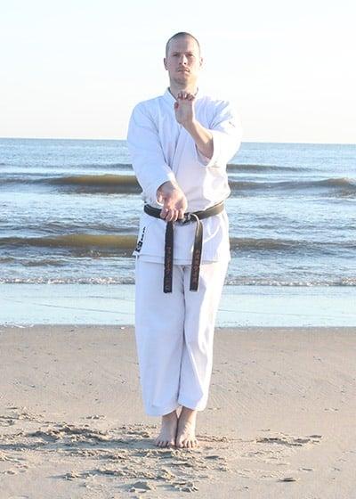 The Digi Dojo - Kata - Wadokai Niseishi - Morote Shoteizuki