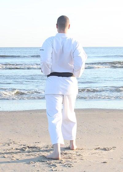 The Digi Dojo - Kata - Wadokai Niseishi - HIkite
