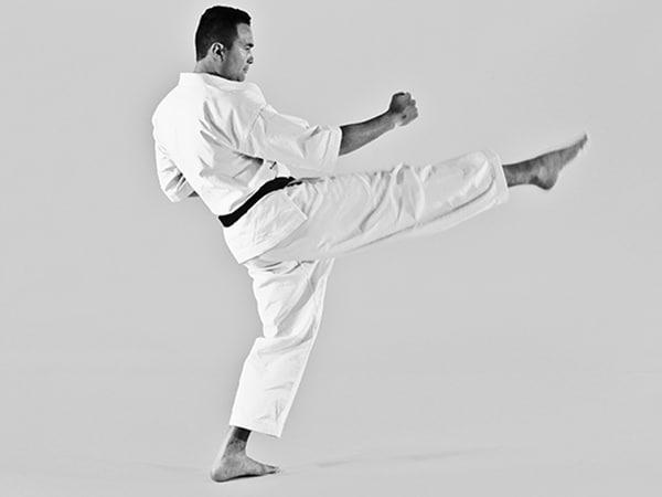 Maegeri is Karate's front kick - The Digi Dojo