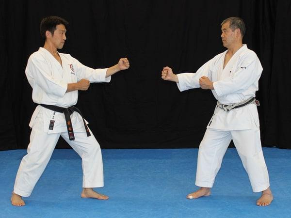 Nukina and Sakagami - Kamae