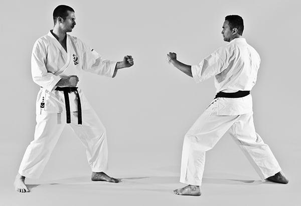 The Digi Dojo - Ohyo Kumite 1 - Kamae