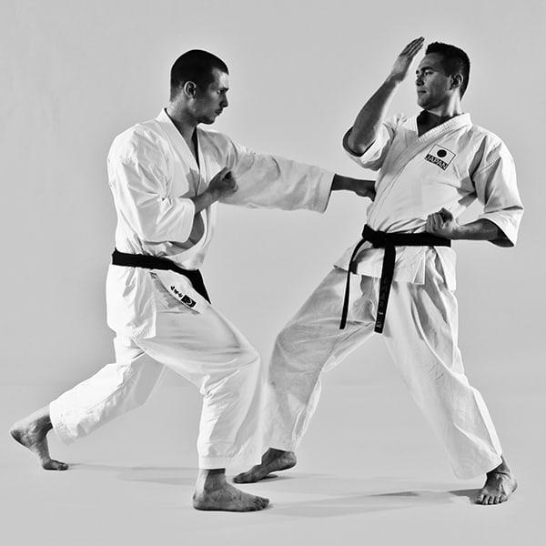 The Digi Dojo - Ohyo Kumite 1 - Gyakuzuki