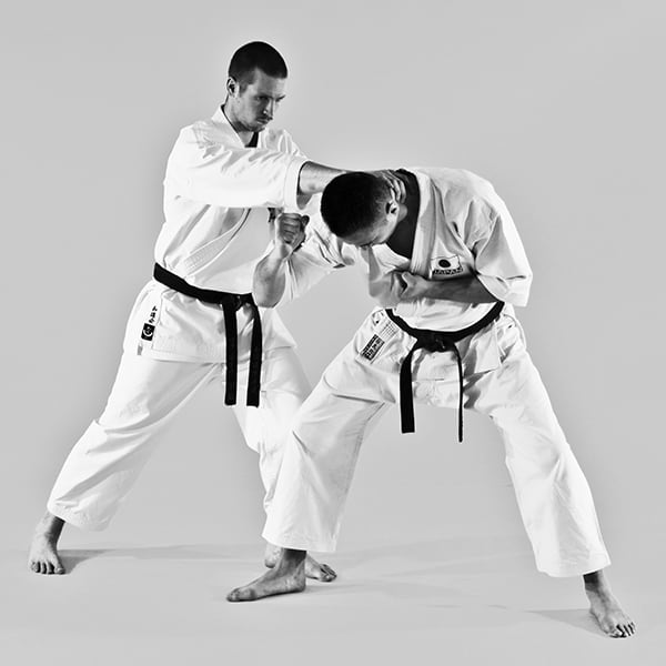 The Digi Dojo - Ohyo Kumite 4 - Control