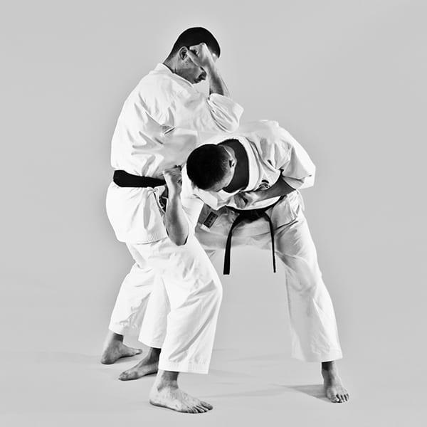 The Digi Dojo - Ohyo Kumite 4 - Empi