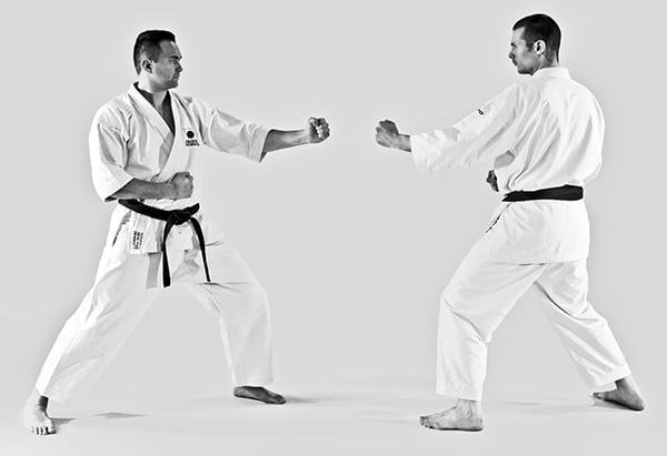 The Digi Dojo - Ohyo Kumite 5 - Kamae