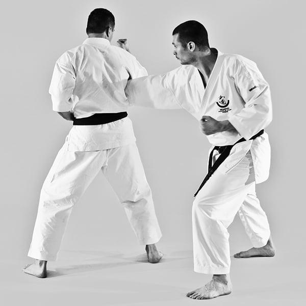 The Digi Dojo - Ohyo Kumite 5 - Haito