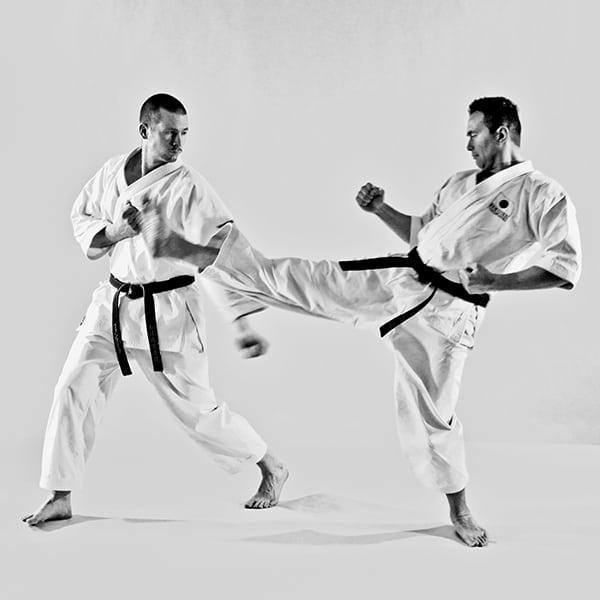 The Digi Dojo - Ohyo Kumite 7 - Harai Uke
