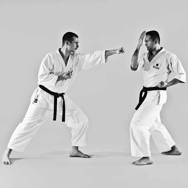 The Digi Dojo - Ohyo Kumite 7 - Nagashi Uke