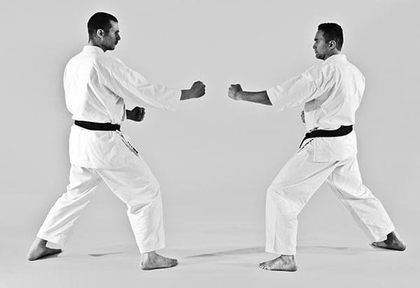 The Digi Dojo - Ohyo Kumite 8 - Kamae