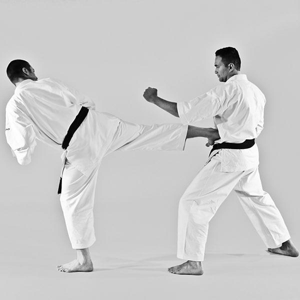 The Digi Dojo - Ohyo Kumite 8 - Ushirogeri