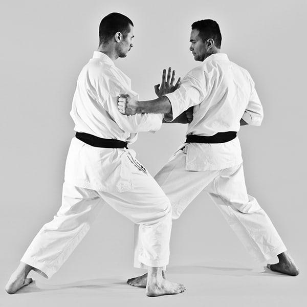The Digi Dojo - Ohyo Kumite 8 - Gyakuzuki