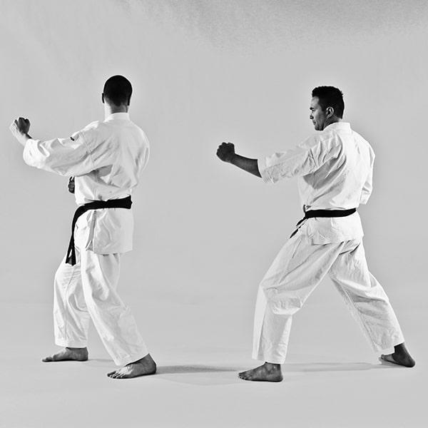 The Digi Dojo - Ohyo Kumite 8 - Ushirogeri prepare