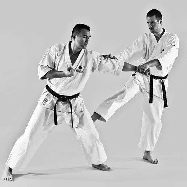 The Digi Dojo - Ohyo Kumite 9 - Gedan Mawashigeri