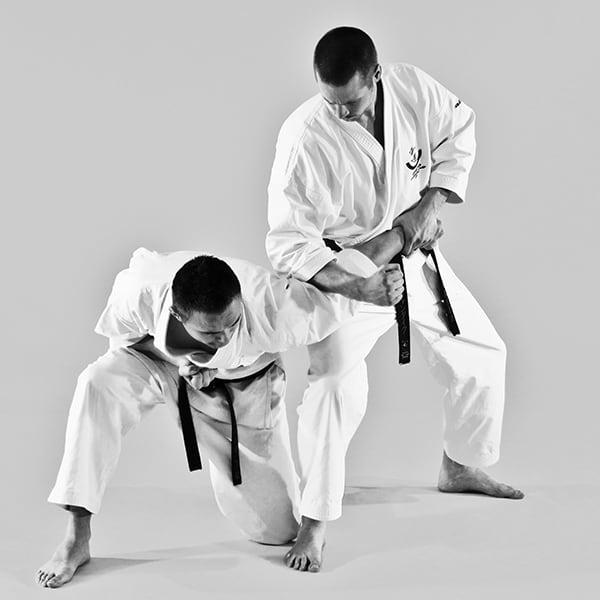 The Digi Dojo - Ohyo Kumite 9 - Ude Osae