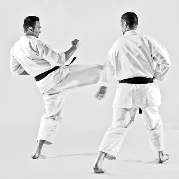 The Digi Dojo - Ohyo Kumite - Uchi Harai Uke
