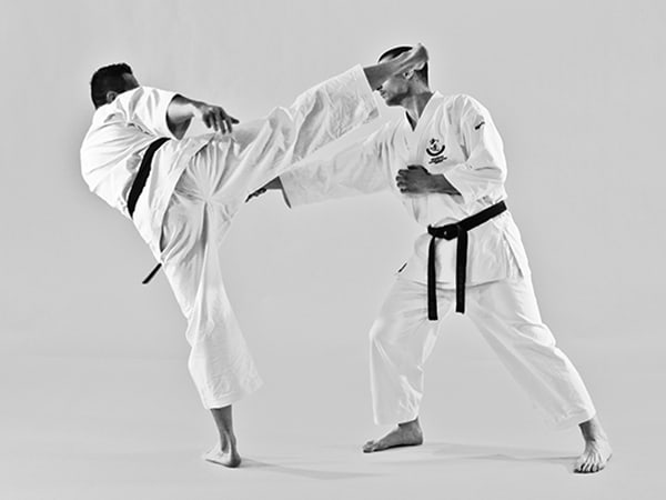 The Digi Dojo - Shiyobui - Application of Mawashigeri