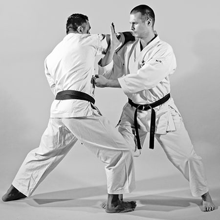 The Digi Dojo - Shiyobui - Application of Nakadaka Ipponken