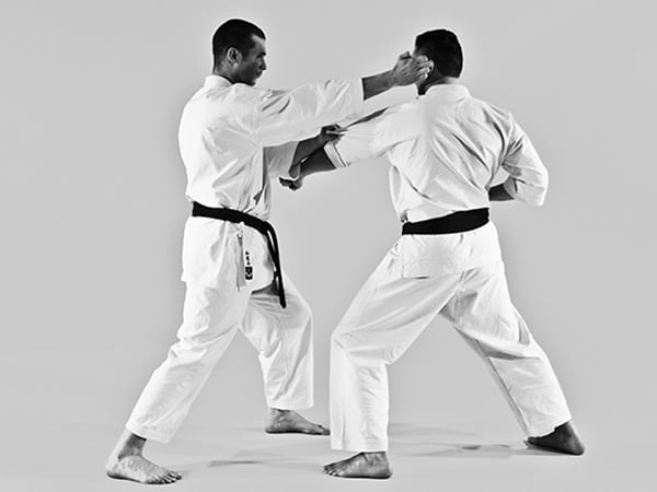 The Digi Dojo - Shiyobui - Application of Nekote