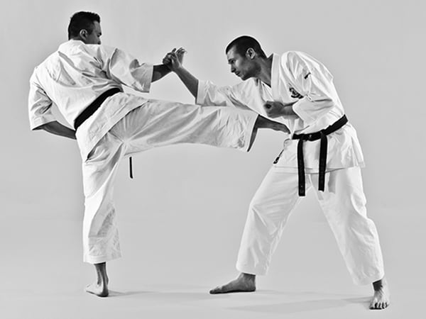 The Digi Dojo - Shiyobui - Application of Sokuto Chudan
