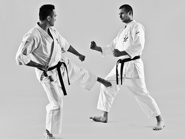 The Digi Dojo - Shiyobui - Application of Sokuto Gedan