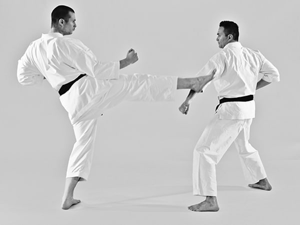 The Digi Dojo - Uke Waza - Application of Gedan Barai