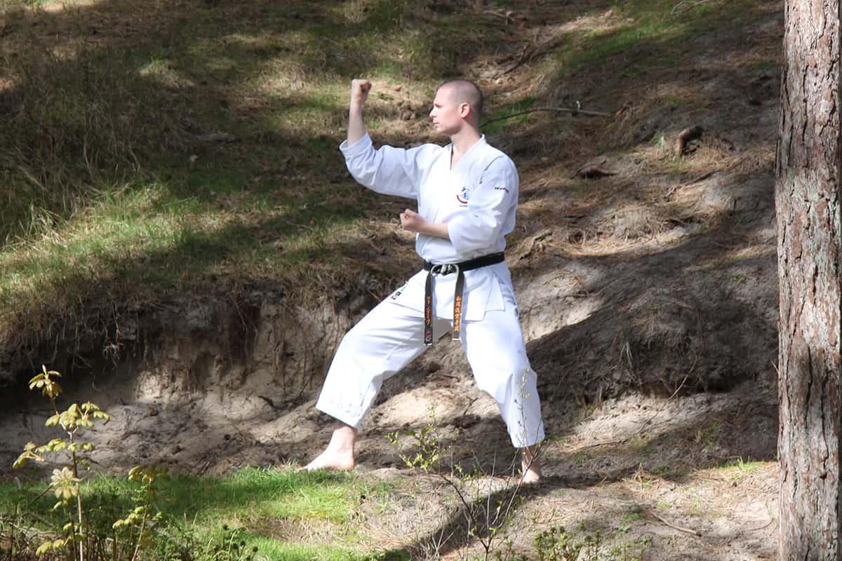 What Stances Exist In Karate? - The Digi Dojo