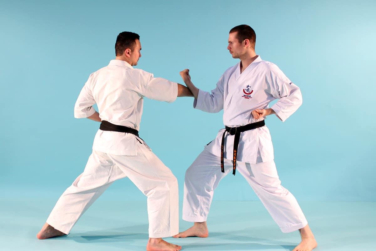 Sanbon Kumite Videos