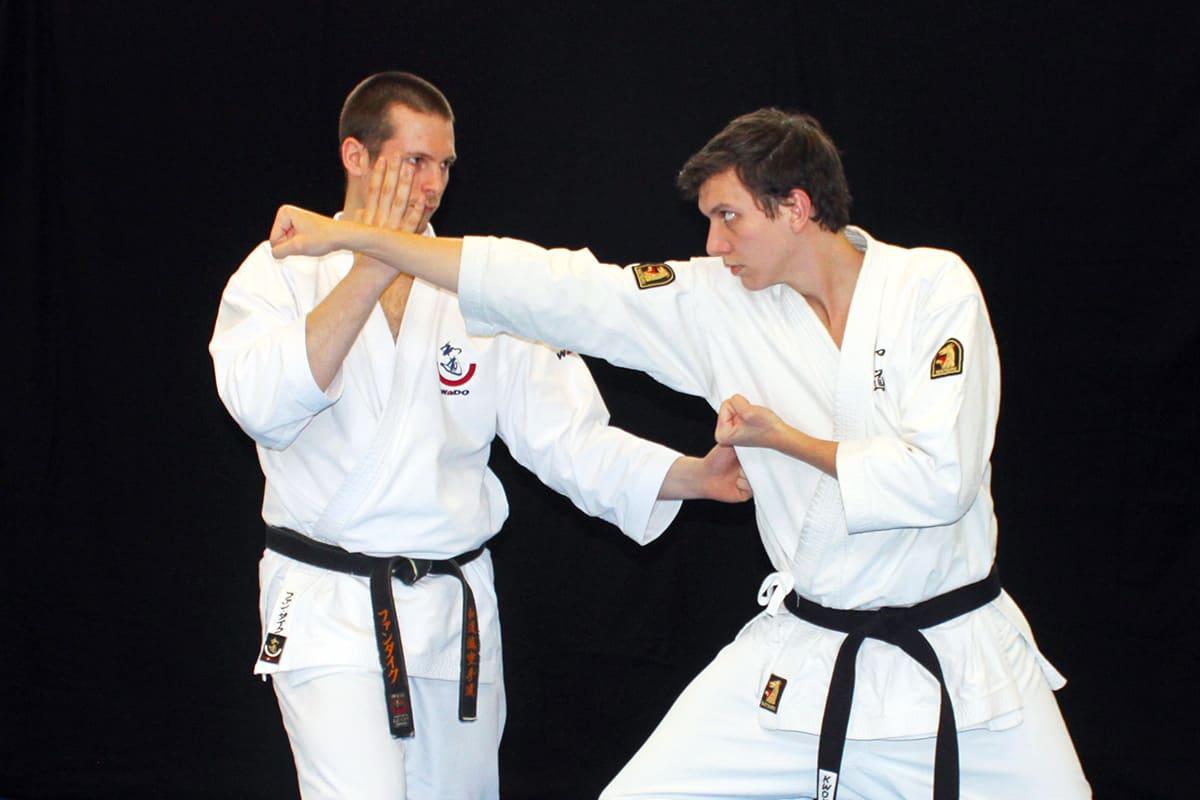 Wado Kumite Taisabaki