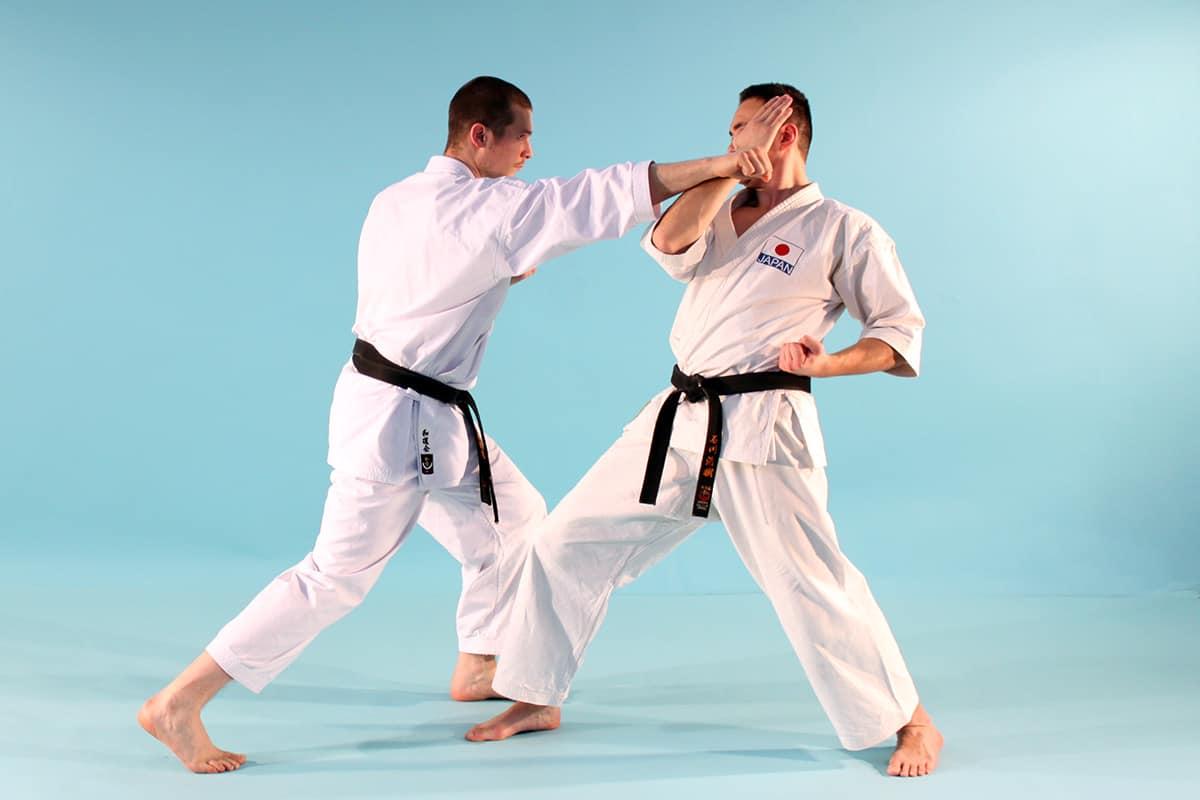 Ohyo Kumite Videos