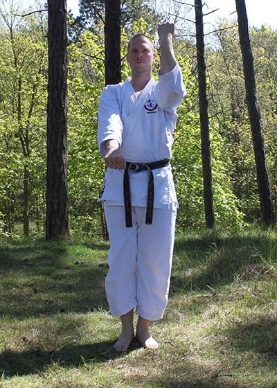 Wadokai Kata Chinto - The Digi Dojo - 18.a - Transition