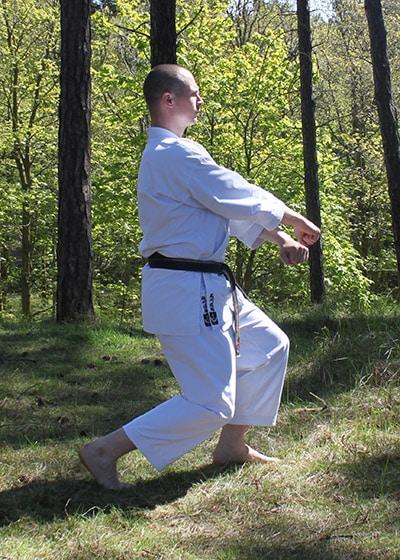 Wadokai Kata Chinto - The Digi Dojo - 19 - Gedan Juji Uke