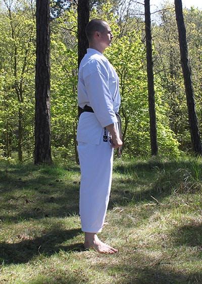 Wadokai Kata Chinto - The Digi Dojo - 21 - Jigotai