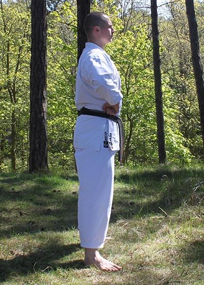 Wadokai Kata Chinto - The Digi Dojo - 22 - Hiji Uke Gamae