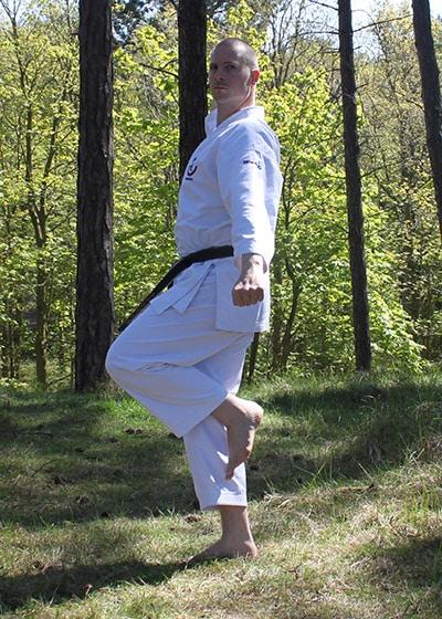 Wadokai Kata Chinto - The Digi Dojo - 26.a Sagi Ashi Dachi