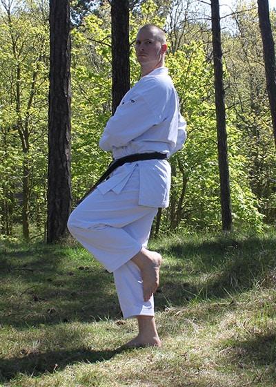 Wadokai Kata Chinto - The Digi Dojo - 26.b Kamae