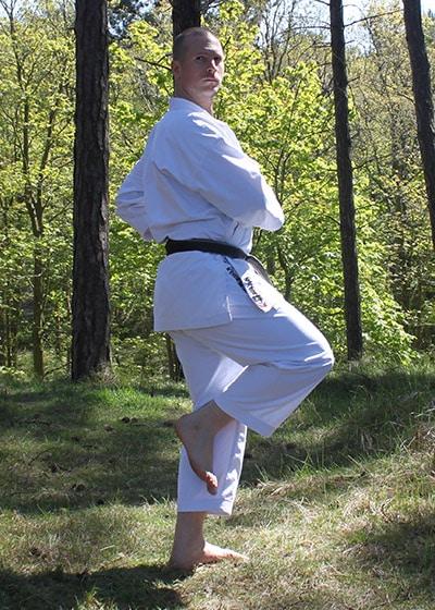 Wadokai Kata Chinto - The Digi Dojo - 28.b - Kamae