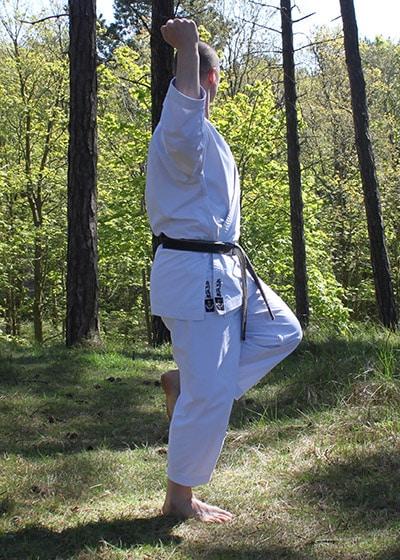 Wadokai Kata Chinto - The Digi Dojo - 30.a - Sagi Ashi Dachi