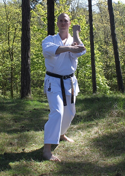 Wadokai Kata Chinto - The Digi Dojo - 33 - Tate Empi