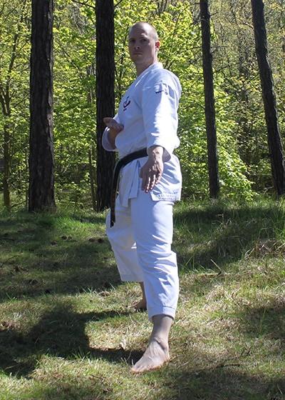 Wadokai Kata Chinto - The Digi Dojo - 12 - Shuto Gedan Gamae