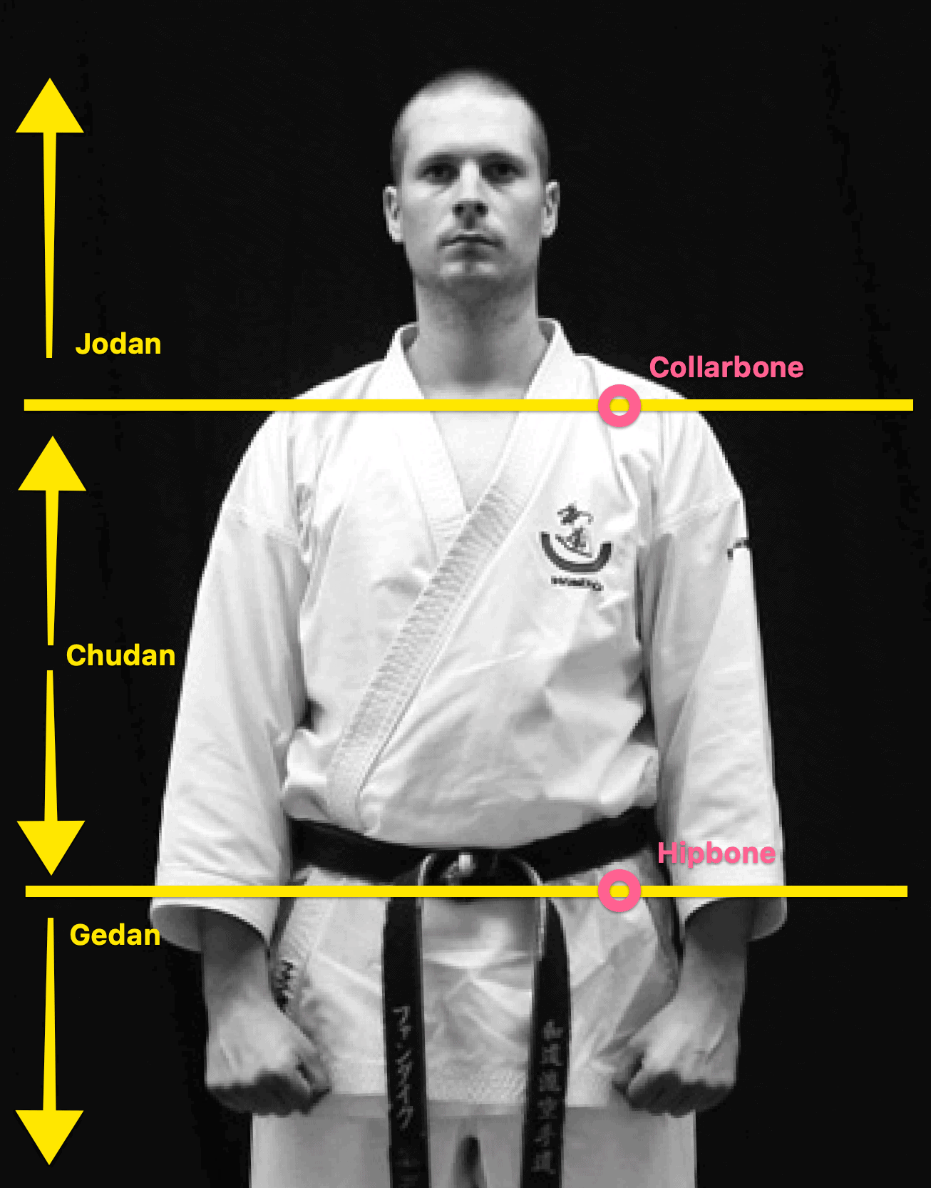 Gedan Chudan Jodan - AJ from The Digi Dojo