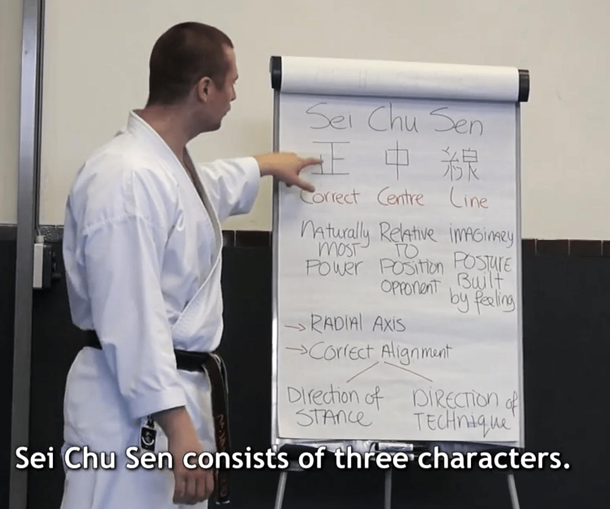Karate Seminar on Seichusen by AJ van Dijk