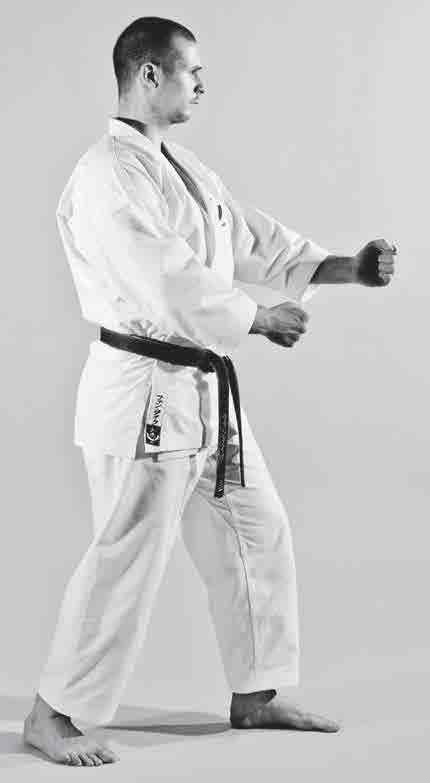 The Digi Dojo - Ido Kihon Tobikomi-Nagashizuki - 2