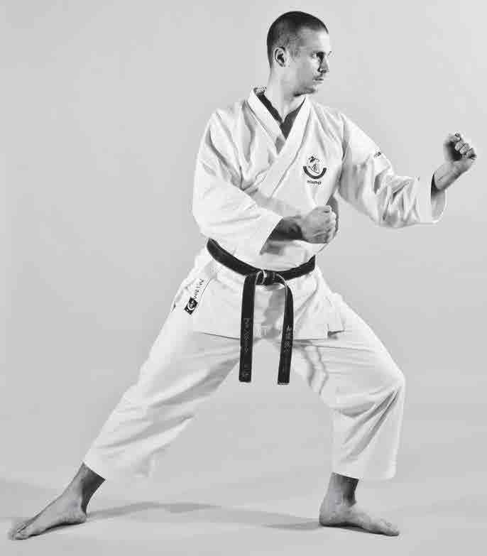 The Digi Dojo - Ido Kihon Tobikomi-Nagashizuki - 4 - Kamae