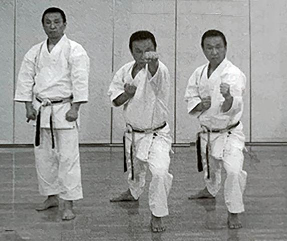 JKF-Wadokai Ito Sensei Tobikomizuki